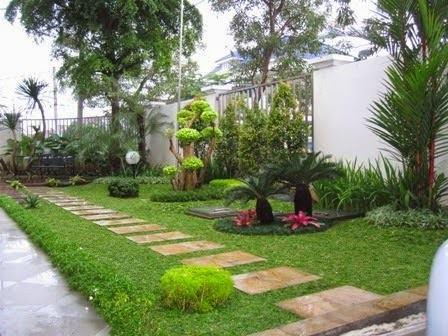 Pohon Palem Untuk Hiasan Taman Minimalis (14)