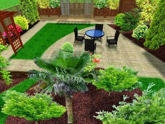 Pohon Palem Untuk Hiasan Taman Rumah Minimalis (15)